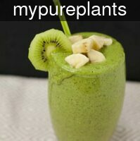 mypureplants_green_l